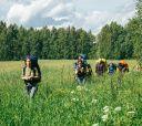 Подмосковье, Пеший поход - В поисках медведей и варенья