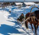 Русский Север, Снегоходный тур - Кенозерский парк