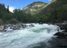 Алтай, Сплав по реке Катунь