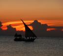 Занзибар, Новый год на острове Занзибар! Hakuna Matata in 2021