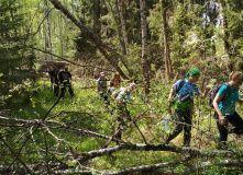 Подмосковье, Пеший поход - Выживание в лесу - Подмосковье