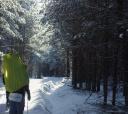 Подмосковье, Лыжный поход по северной Мещере к озеру Острец