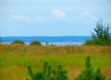 Подмосковье, Пеший поход - Вокруг Плещеева озера - Тропою контрастов - Ярославская область