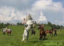 Подмосковье, Мультитур - Тур с катанием на конях и квадроциклах- Подмосковье