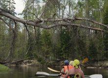 Подмосковье, Сплав по реке Лух на байдарках с походной баней - Владимирская область