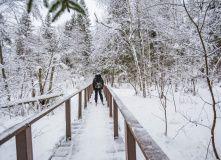 Подмосковье, Лыжный поход - Страна белоснежных троп - Подмосковье