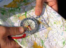 Подмосковье, Пеший поход - Веревка, карта, две сосны - Подмосковье