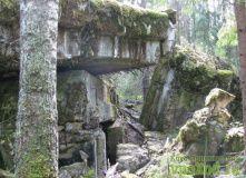 Сев-Запад, Традиционный майский поход по Линии Маннергейма [Ленобласть]