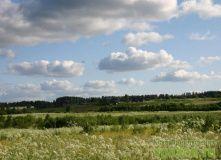 Сев-Запад, Природный парк Вепсский Лес