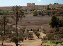 вид на стены Старого города