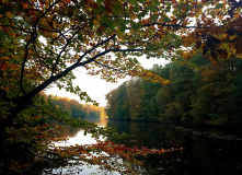 """Калининград, """"Порция природы"""" - прогулка вдоль озёр Калининграда"""