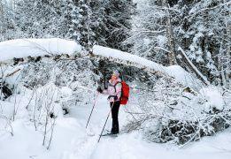 Лыжный поход – через Мещеру с ночевкой в приюте