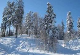 Ореховый склон. Обучение катанию на туристических лыжах