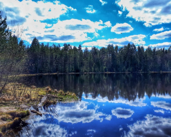 Прогулка в Орехово: меж трёх озер