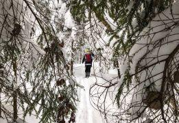 Зимний поход в Каннельярви