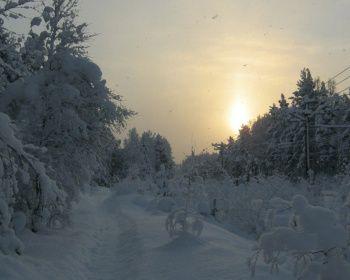 Лыжная сказка реки Смородинки