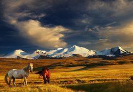 Конное путешествие к подножию пяти священных гор