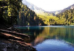 Горный лагерь в Абхазии (с проживанием в домиках)