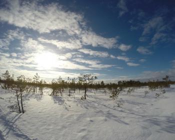 Лыжный поход - Оршинский мох – Затерянный мир
