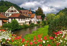 Горный лагерь в Шварцвальде: сказки Черного леса
