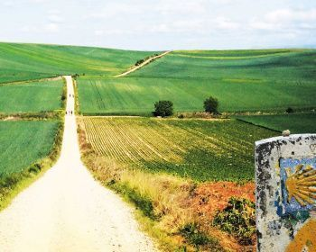 Путь Сантьяго на велосипеде