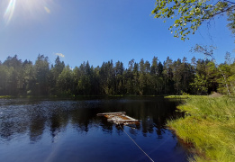Озерная прогулка (Зеленогорск-Комарово)