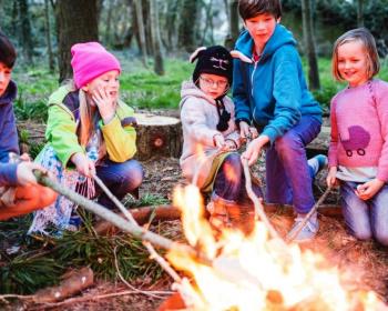 Семейный лагерь исследователей природы. В гости к Зубрам и Страусам