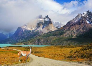 Мультитур по Южной Патагонии