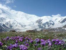 Горный трекинг к пику Ленина в Киргизии