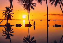 Новый год на острове Занзибар! Hakuna Matata in 2021
