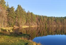 Прогулка к Щучьему озеру