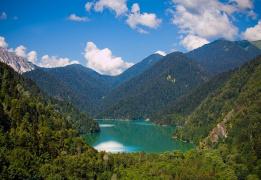 Оздоровительный тур в Абхазии. Гуляем, худеем, молодеем