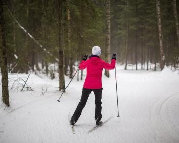 Поход для начинающих. Лыжная прогулка