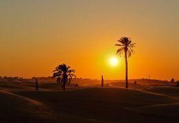 Тунис: жаркое сердце Сахары (разведка)