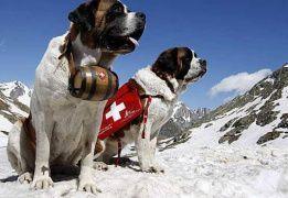Путь Святого Бернара: из Швейцарии в Италию