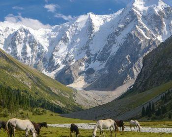 Комфорт-тур в Киргизии (разведка)
