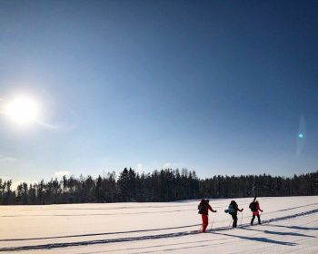 К зимовью на реке Смородинке