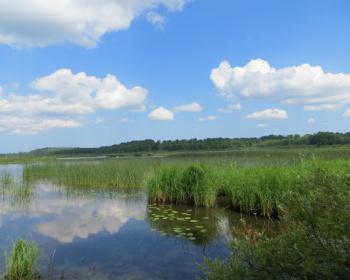 """Прогулка """"Слушая тишину"""" - Лемболовские озера"""