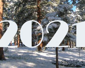 В теплом кругу. Новогодняя ночь 2021 с проживанием в теплом доме и активной программой