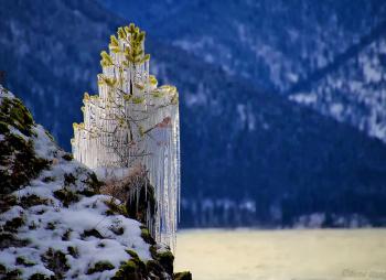 Зимняя сказка Алтая