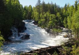 Водопады Карелии: река Винча