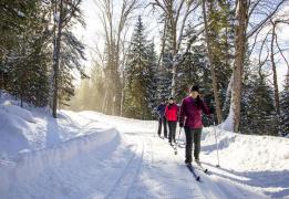 Лыжная прогулка в Орехово