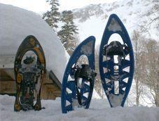 Путешествие к Карельскому укреп. району на снегоступах [Ленобласть]
