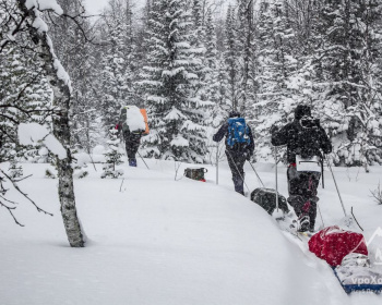 Лыжный поход- Учебно-Тренировочные Сборы-Подмосковье