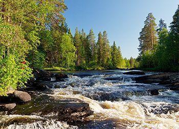 Сплав по реке Шуя Беломорская с выходом в Белое море