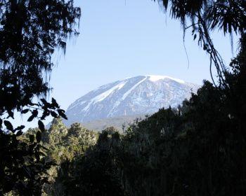 Восхождение на Килиманджаро. Маршрут Умбве
