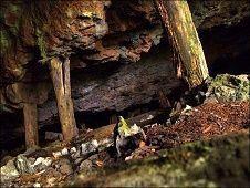 Загадка старого рудника
