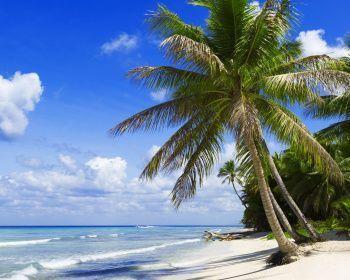 Тайны острова Мадагаскар
