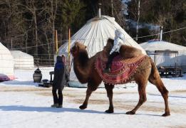 Пеший семейный поход с ночевкой в юртах кочевников