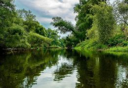 Сплав-эКсПедиция по реке Х на байдарках